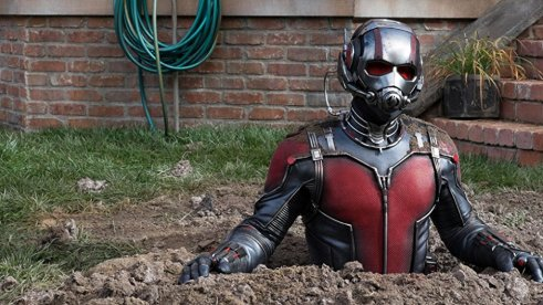 Ant Man in Suit in the ground