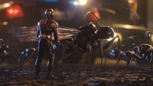 Ant Man Antony